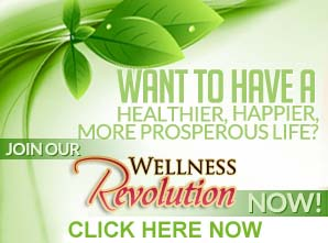 My Wellness Revolution