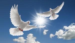 Spirit-Doves-300x173